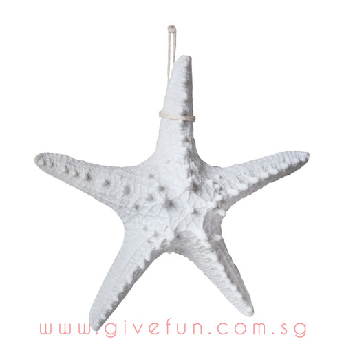 Decorative Knobby Starfish - White (16cm)