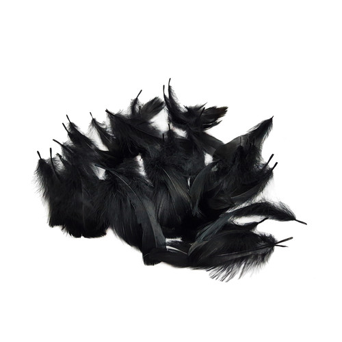 Decorative Feathers - Black