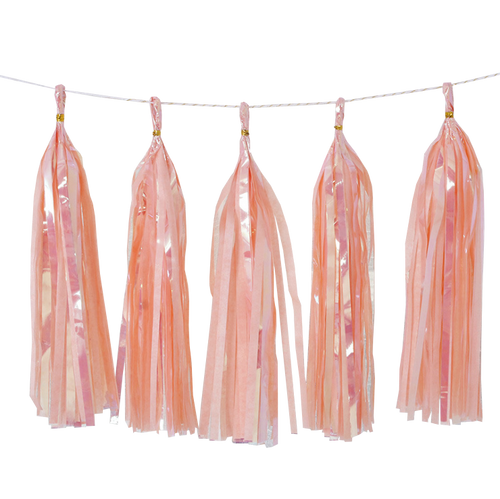 Holographic Candy Tassel Garlands DIY Kit (5 Tassels) -  All Candy Peach
