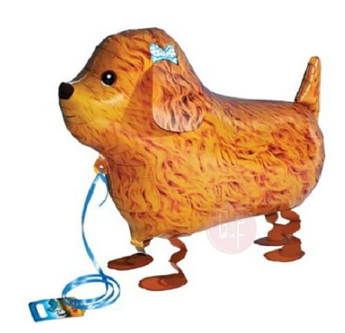 Walking Pet Balloon - Poodle Dog