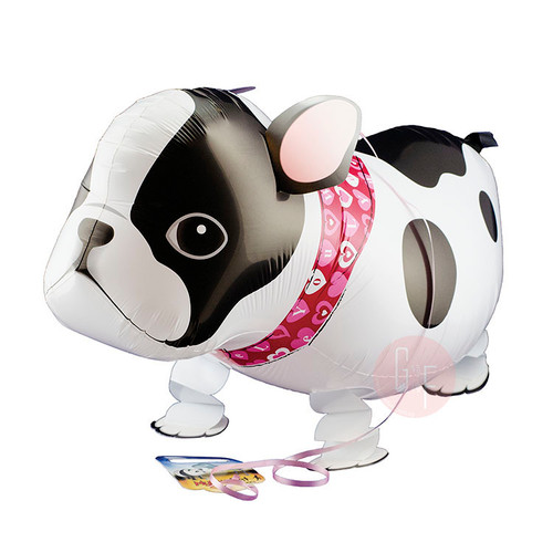 Walking Pet Balloon - French Bull Dog: Helium Inflatable (optional)Walking Pet Balloon, ribbon is included. Walking Pet Balloon is made with high-quality mylar foil, welded seams and inflation valves are designed for long lasting fun.