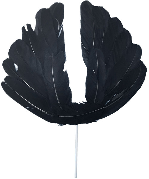 Angel Wings Cake Topper - Black Feather