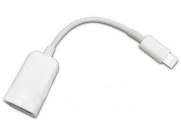 "iPad USB Keyboard Interface mini ""lightening"" pin camera kit"