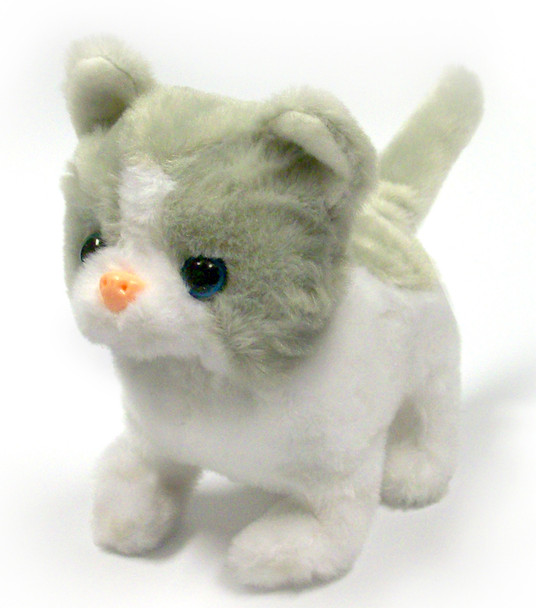 Cloud switch adapted kitty
