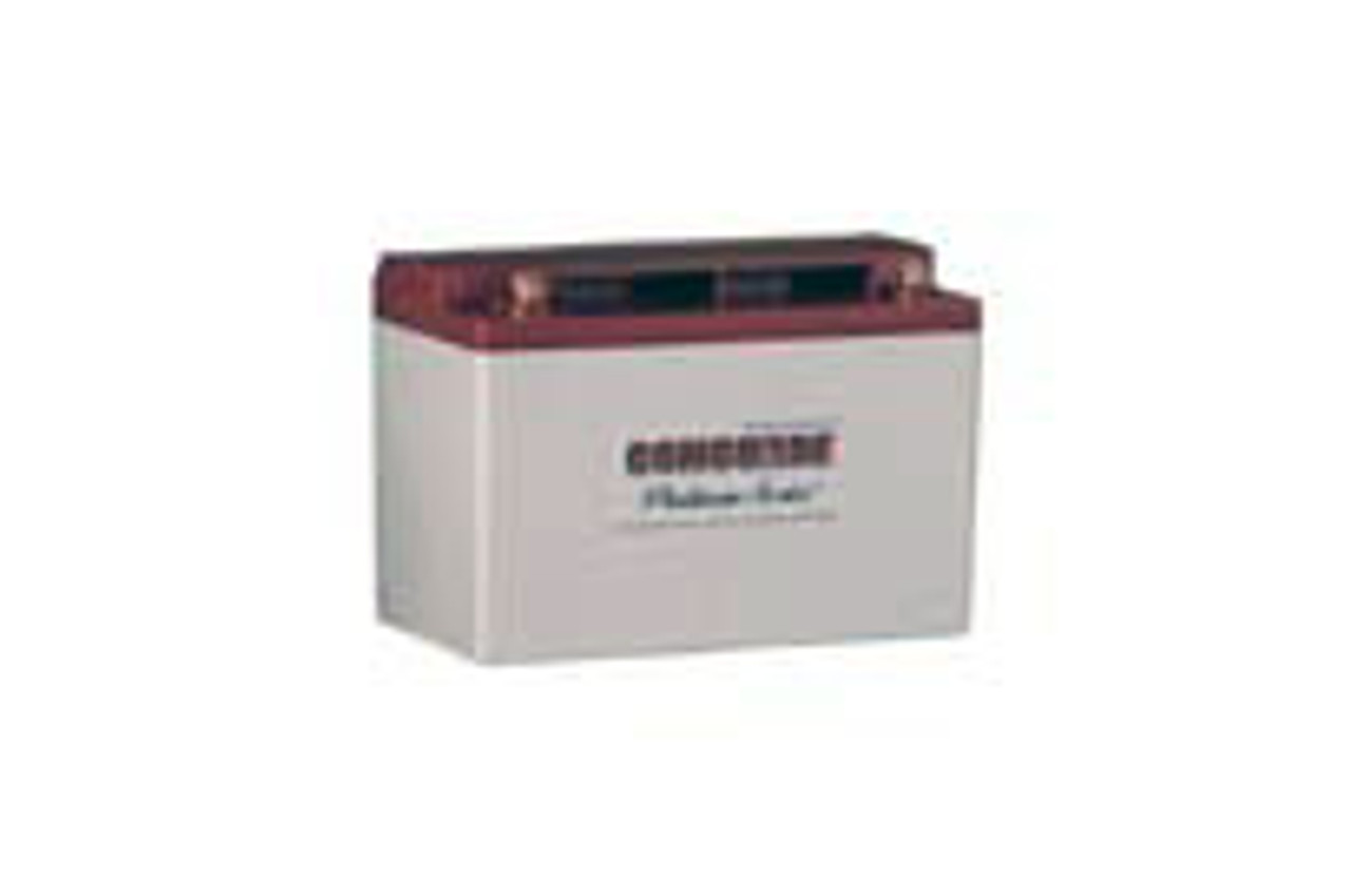 RG-35AXC Concorde Battery