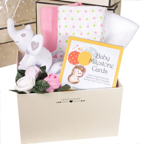 Newborn Baby Girl Gift Box (Elephant)