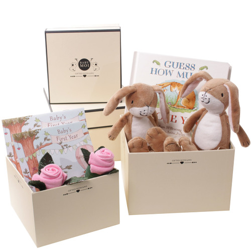 2 Tier Baby Girl Twins Gift Box (Gmily Hare)