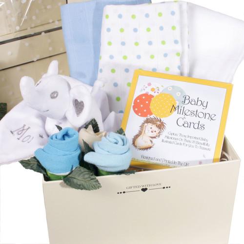 New Baby Boy Gift Set Blue Baby Moi Elephant