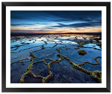 José Ramos, Natural Networks IV, EFX, EFX Gallery, art, photography, giclée, prints, picture frames
