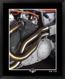 Harley-Davidson XR750 Fine Art print EFX Gallery by photographer Daniel Peirce