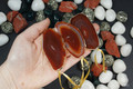 Gold Plated Red Agate Slice Ornament Set of 3