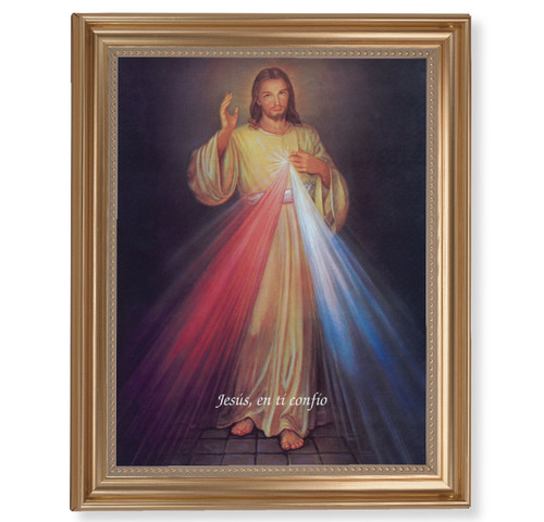 "Divine Mercy (Spanish) Classic Gold Framed Art | 11"" x 14"""