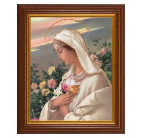 "Mystical Rose Dark Walnut Framed Art   8"" x 10"""