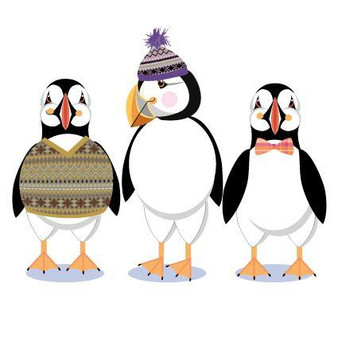 Puffins Blank Card by Pink Pig