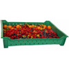 Standard Berry Flat Tote (1 Pallet = Qty 120)