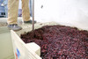 Winemakers typically punch down 2-3 times per day during fermentation