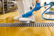 Waterfed Cleaning Brushware Offers Superior Sanitation for Food Processors