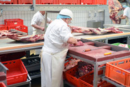 Mitigating Foreign Body Contamination Recalls in Food Manufacturing