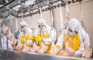 Deep Cleaning Food & Beverage Facilities After a COVID-19 Shutdown