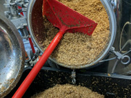 ​Is Your Spent Grain Consumed By Animals? 5 FSMA Requirements You Need To Know.