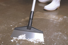 "10"" Stainless Steel Floor Scraper with 60"" Ergo Handle"