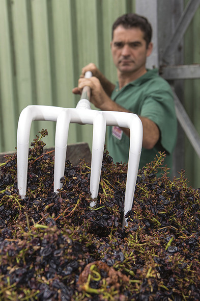 Vikan 56915 Hygienic Rake - Perfect for Wineries