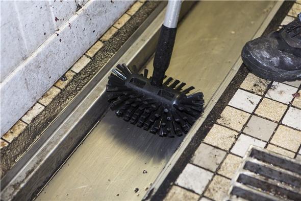 "8"" Stiff Drain Brush With 53"" Drain Handle Cleaning Gullies"