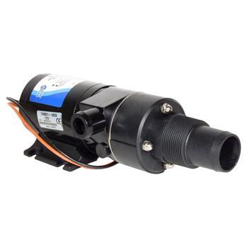 Jabsco Run-Dry Macerator Waste Pump - 12V (20A)