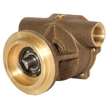 """Jabsco Flexible Impeller Bronze Pump - 20 - 3/8"""" BSP - Back View"""