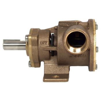 "Jabsco Flexible Impeller Pedestal Bronze Pump - 80 - 1"" BSP - Foot - Side View"