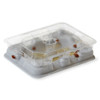 Mastertrap Bed Bug Catcher Monitor Traps