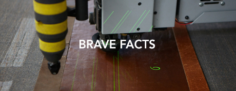 BRAVE Leather Facts