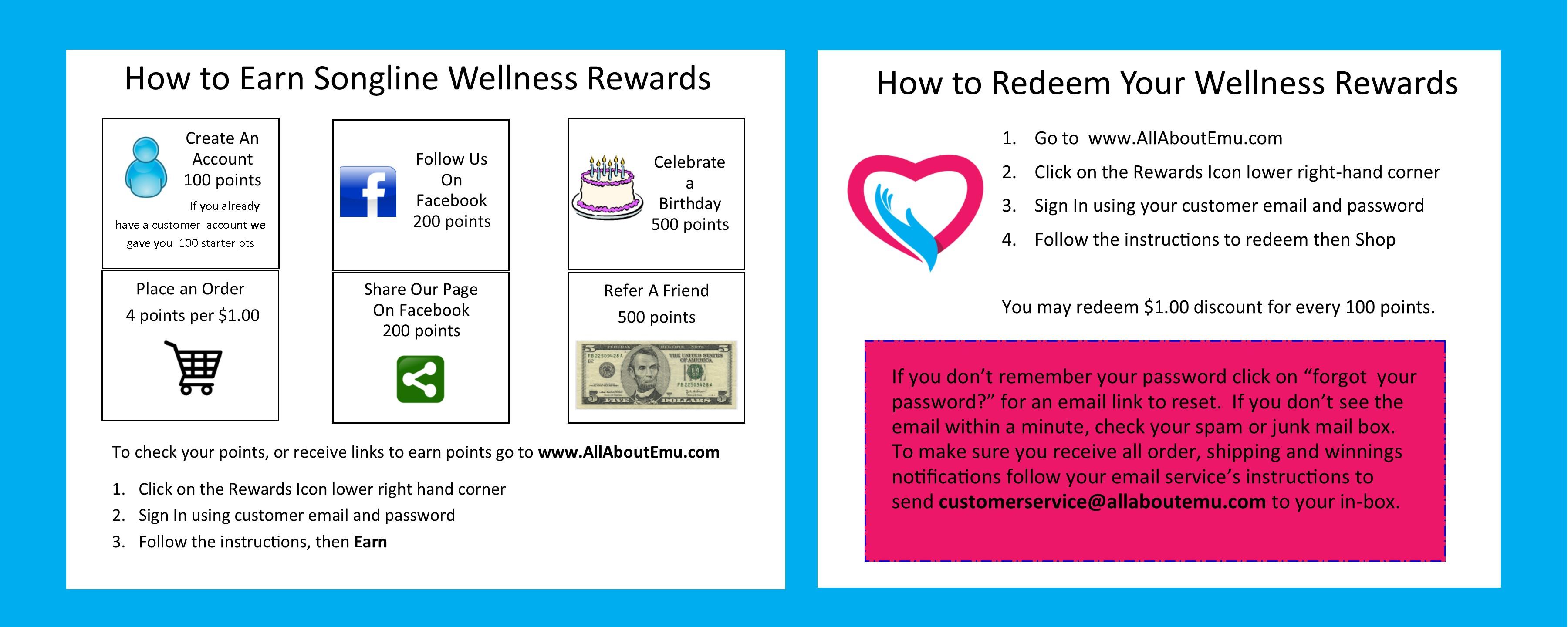 wellness-rewards-summary.jpg