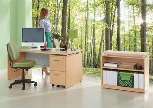 3pc Modern Contemporary Executive Office Desk Set, #AL-SED-D4