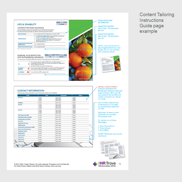 Thumbnail image for Benefits Enrollment Guide (12-page) Content Tailoring Guide Outdoor Vibrant pg 10