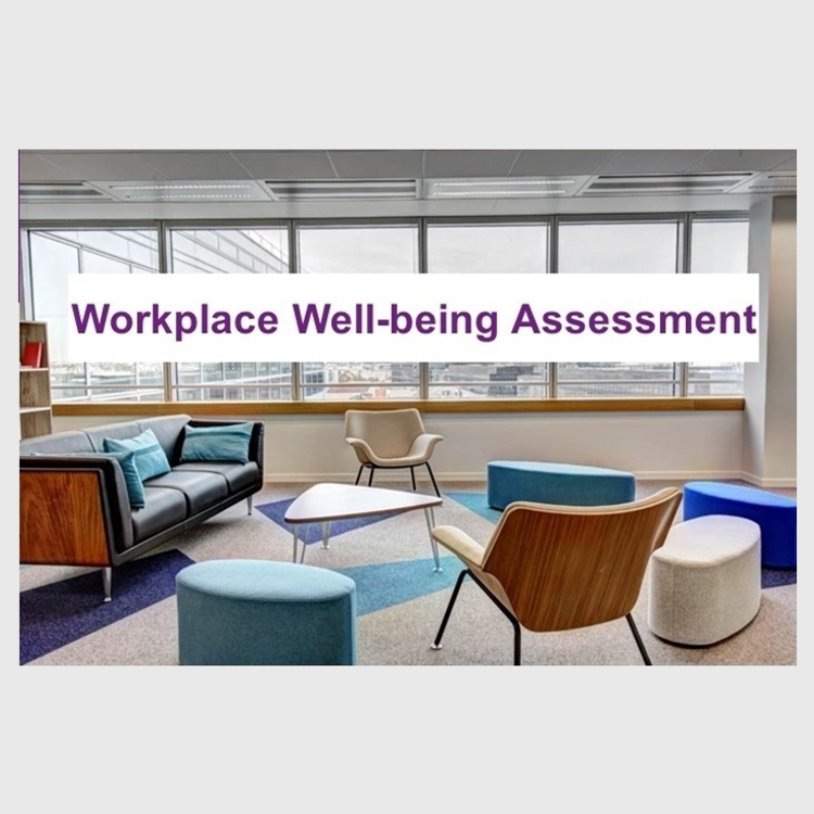 Primary thumbnail image for video Workplace Wellbeing Assessment http://videos.sproutvideo.com/embed/1c9adeb71f1ee3ce94/e7dc9ebf8c1d7da2