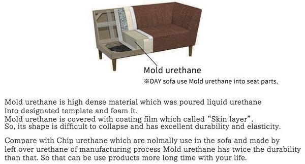 day-mold.jpg