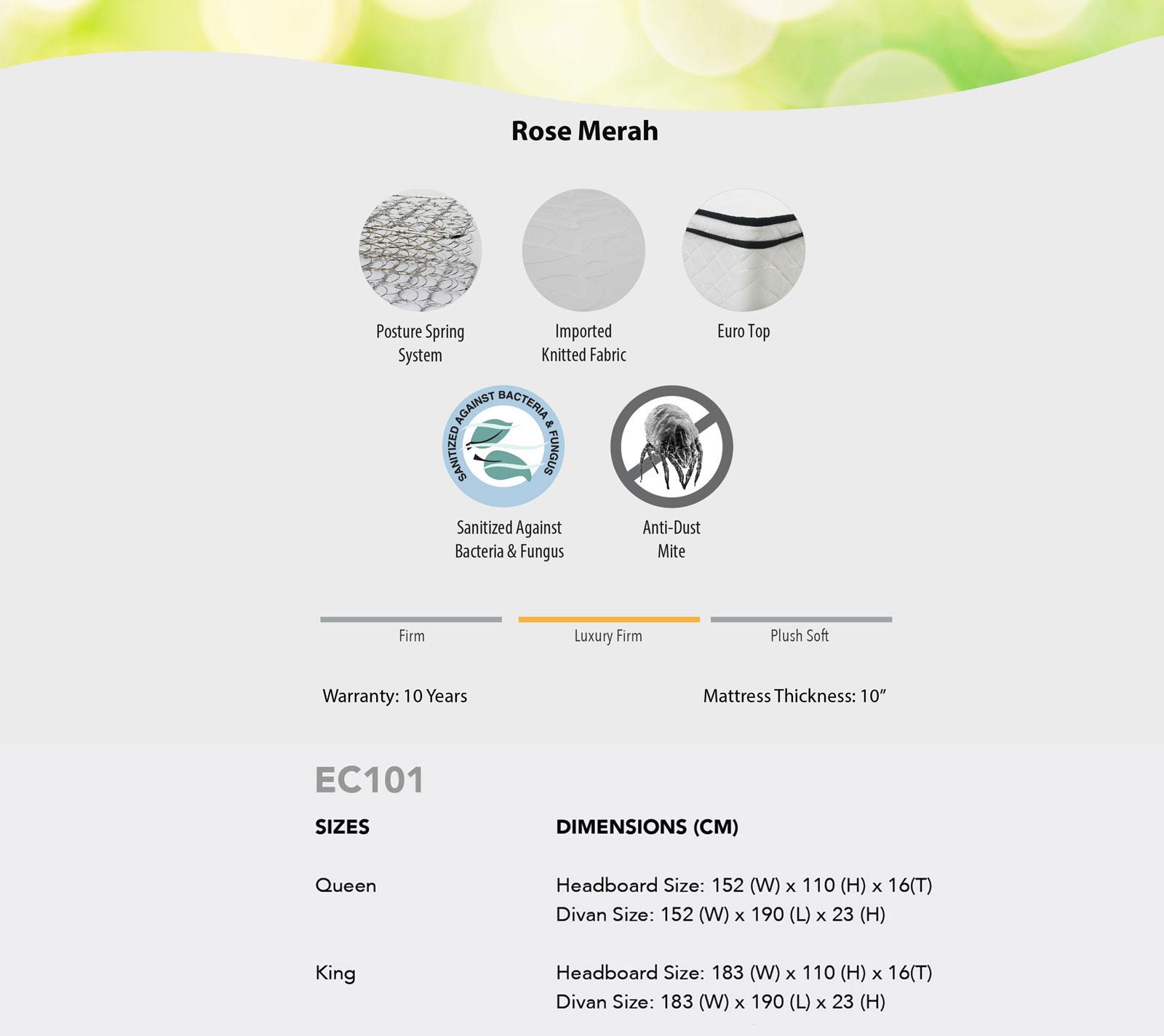 ec101-bedframe-01.jpg