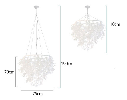 foresti-paper-size.jpg
