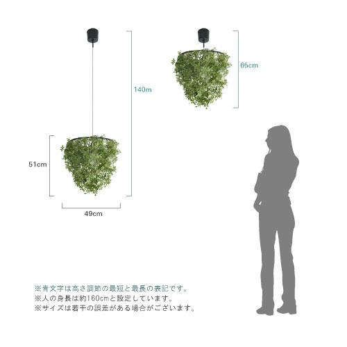 mini-foresti-main03.jpg