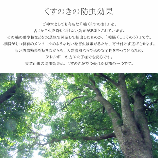 shb-161094set-4.jpg