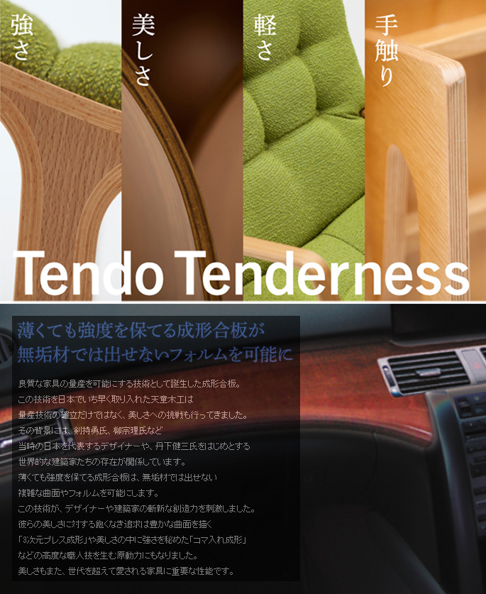 tendo-details4.jpg