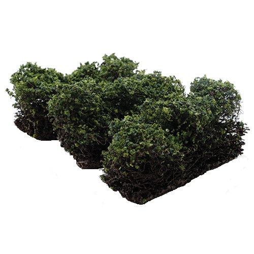 Low Green Bushes - Set of 3 (CA0315)