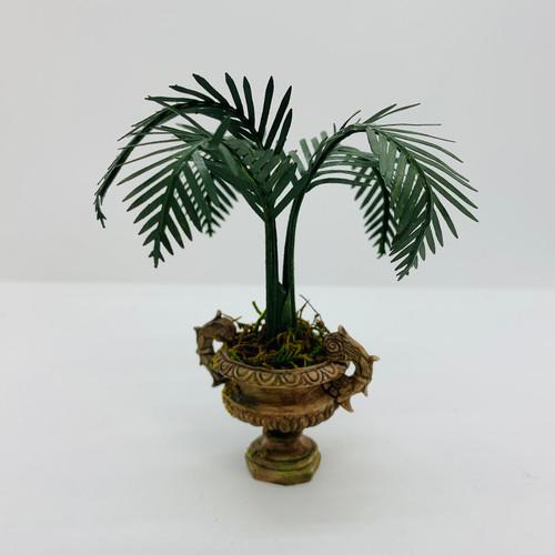 Palm in Urn (UFN3009); different lighting