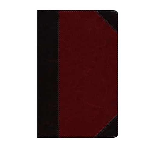 Kinh Thánh Tiếng Anh - Bản English Standard Version ESV - Thinline Reference - Bìa Da Nâu - KTTA-1371