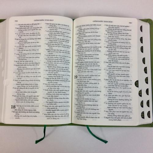 Kinh Thánh Tiếng Việt - Bản Truyền Thống Hiệu Đính - Mạ Bạc - KTTV-1631