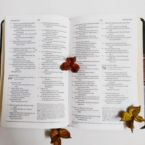Kinh Thánh Tiếng Anh - Bản English Standard Version ESV Thinline Reference - Bìa Đen Sọc Nâu - KTTA-1671