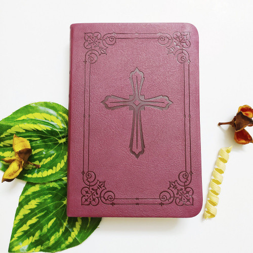 Kinh Thánh Tiếng Anh - Bản New International Version NIV Compact - Bìa Nâu Đỏ Thập Giá - KTTA-0842