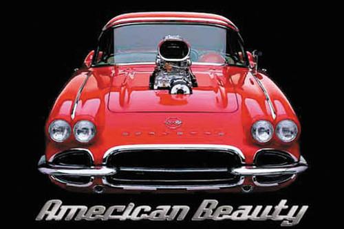 American Beauty1