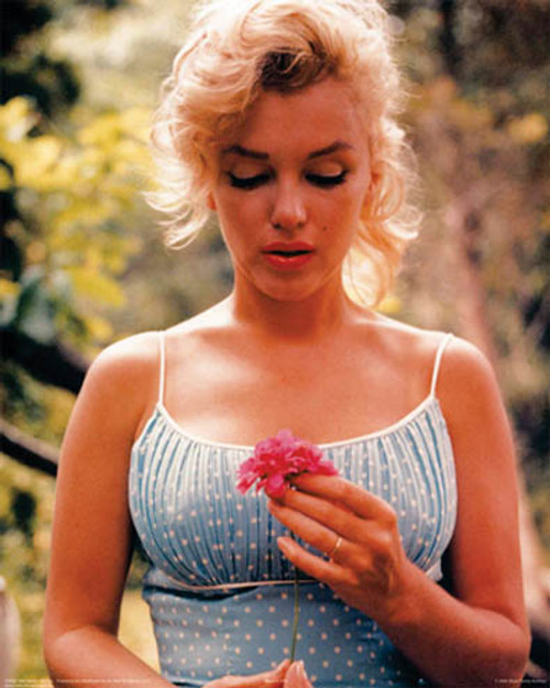 Marilyn Monroe Flower2